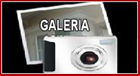 galeria-ikona